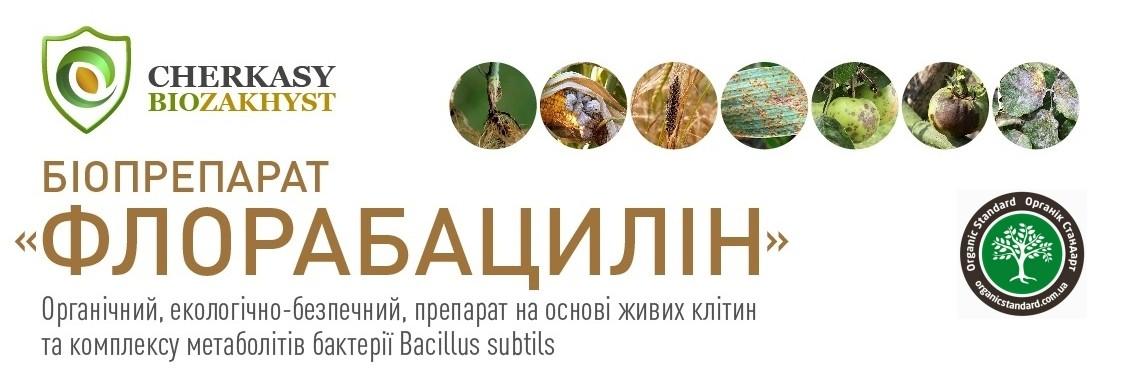 Флорабацилин